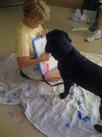 Puppy Picasso