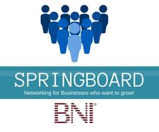 BNI Springboard logo