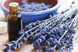 Create Your Own Natural and Therapeutic Spa Products Workshop