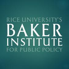 Rice University's Baker Institute logo