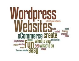 WordPress Websites 2013