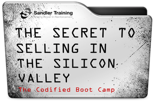 THE SECRET TO SELLING IN THE SILICON VALLEY:  THE CODIFIED...