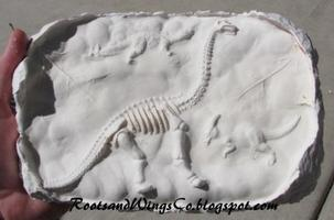 "Plaster ""Fossil"" Craft"