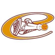 Cannons / 501(c)(3) logo