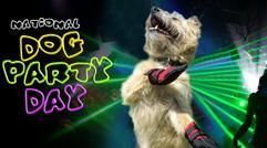 National Dog Party Day Austin