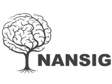 NANSIG (Neurology And Neurosurgery Interest Group) logo