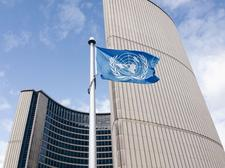 United Nations Association in Canada- Toronto Branch logo