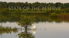 State of the Reserve logo