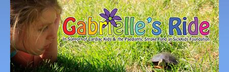 Superstars Live Benefit show in Support of Gabrielle's...