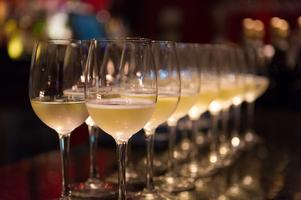 GIANT Italian Wine Tasting