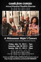 Cameleon Cordas Chamber Ensemble Concert