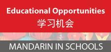 Mandarin in Schools logo