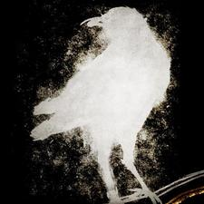 Raven Bar & Lounge logo