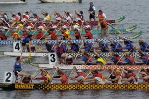 Charity Dragon Boat Fun Day