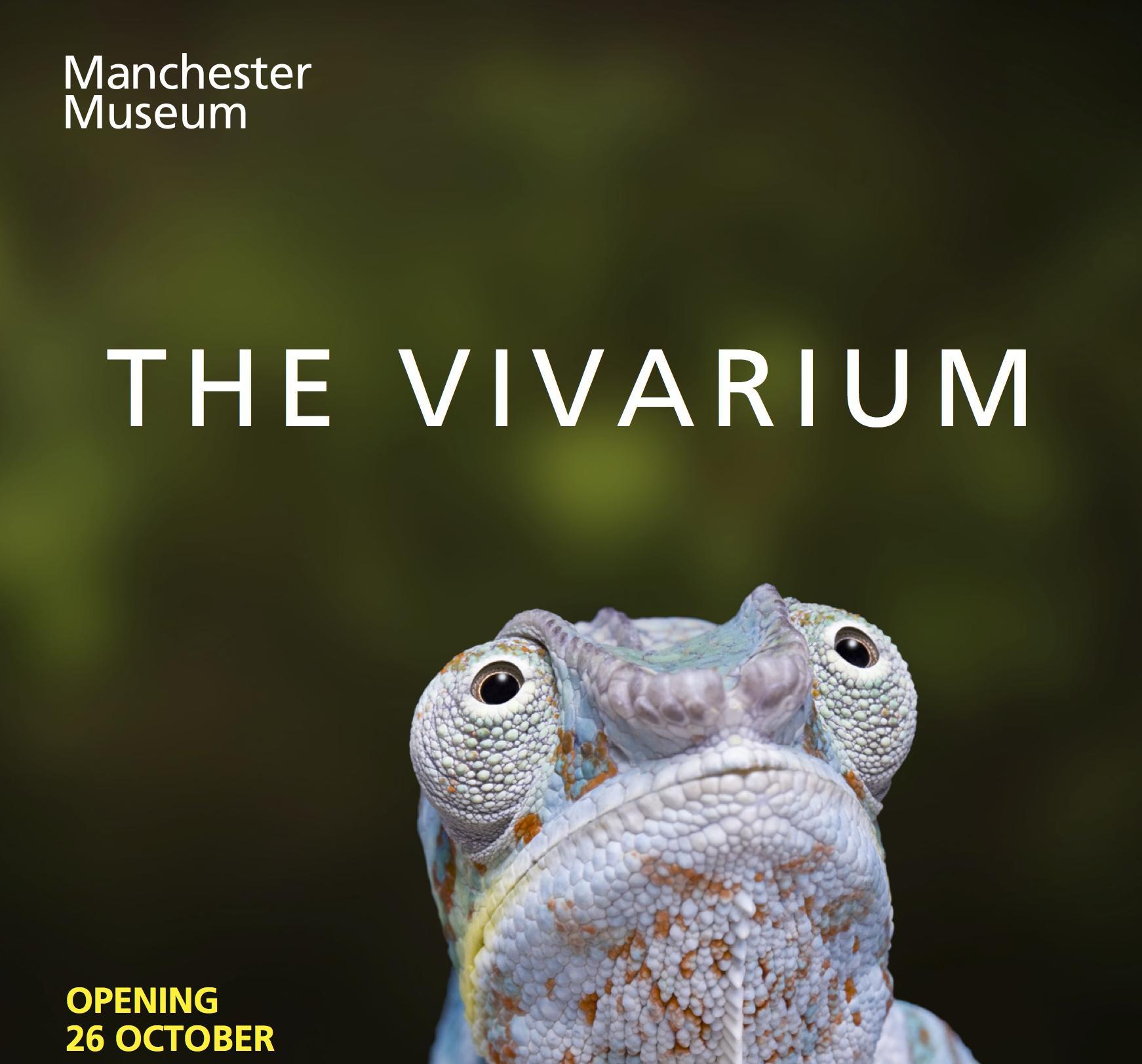 Vivarium Gallery Tour
