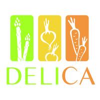 DELICA's Master Sushi Class 101 - Roll