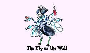 Adelaide Fly on the Wall Networking / Business Event