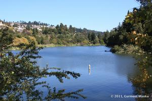 Open Water Swim Clinic at Lake Temescal