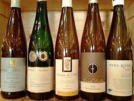 Wine Tasting at AOC Fine Wines, Old Greenwich, CT:...