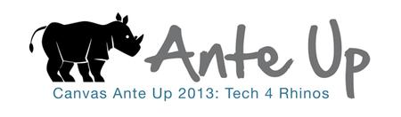 Canvas Ante Up 2013: Tech 4 Rhinos