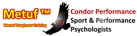 Mental Toughness Training for Coaches and Parents (Level One)
