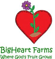 BigHeart Farms VBS