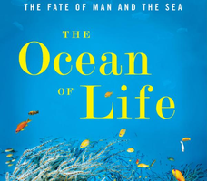 Ocean of Life - by Prof Callum Roberts, 6for6.30, Tue...