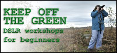 """KEEP OFF THE GREEN"" - DSLR Photography Workshops for..."