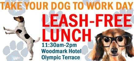 Leash-Free Lunch at Carillon Point's Take Your Dog To...