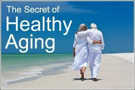 The Secrets of Anti-Aging