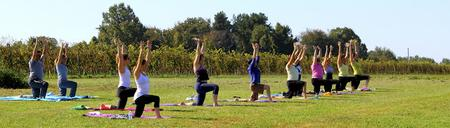 Wine, Body, Soul... Yoga in the Vineyard