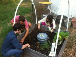 Austin Permaculture Design Course - Fall 2013