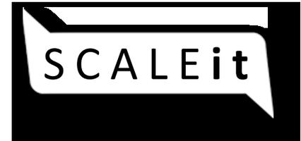 Silicon Valley - SCALEit in Denmark