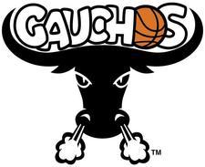 Teamwork Foundation Inc. & New York Gauchos Basketball logo