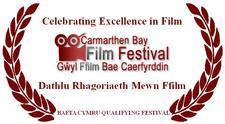 Carmarthen Bay Film Festival logo