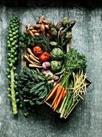 Healing Foods for Autoimmune Disease