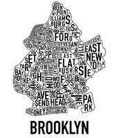 Meet the Candidates: Brooklyn