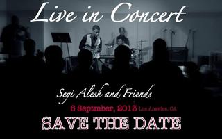 SEYI ALESH & FRIENDS LIVE IN CONCERT 2013 FEATURING...