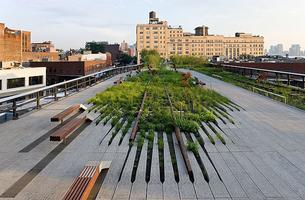 Gay Social Walking Tour: The High Line - August 14