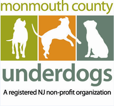 Monmouth County Underdogs logo
