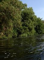 LA River Kayak Rentals