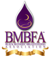 The 2nd Annual Black Mothers Breastfeeding Summit