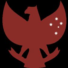 AIYA NSW Chapter logo