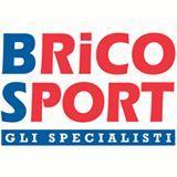 BRICOSPORT  logo