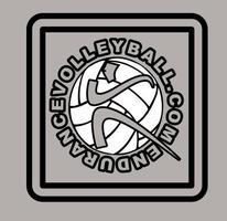 2013 Fall Volleyball (11-14 years old)