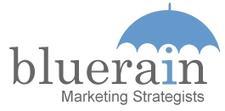 Bluerain LLC logo