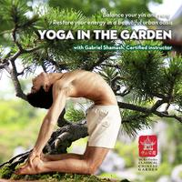 Yoga in the Garden 2013