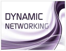 Dynamic Networking - Sale