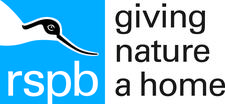 RSPB Northern Ireland logo
