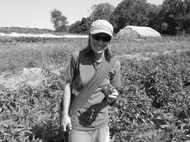 Summer Organic Pest Prevention and Crop Production